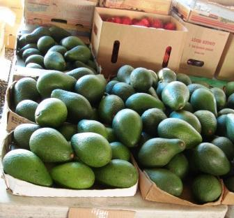 Avocados at Farmers Market in Hilo, Hawaii